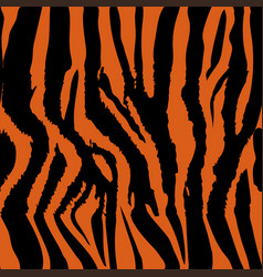 background pattern texture tiger and zebra strip vector image