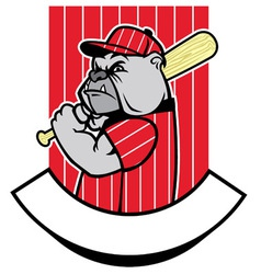 bulldog baseball player vector image vector image