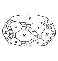 Calcium phosphate apatite vintage vector