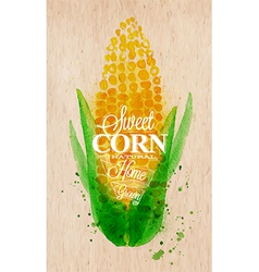Corn watercolor poster vector image