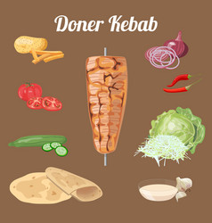 Doner kebab ingredients vector