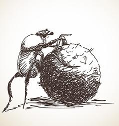 Dung beetle vector