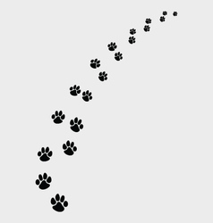 footprints dogs 3 vector image