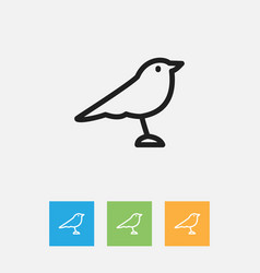 of zoology symbol on thrush vector image