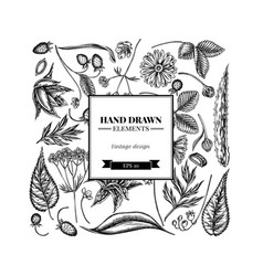 Square floral design with black and white aloe vector