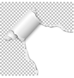 Torn hole of lower right corner of transparent vector