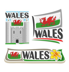 logo for wales vector image vector image
