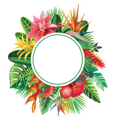 round frame from tropical plants and flowers vector image vector image