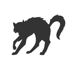 silhouette of the cat who arched its back vector image vector image