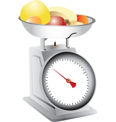 Fruit on weighing scales vector image