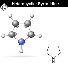 Pyrrolidine chemical structure and 3d model vector image