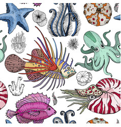 Seamless pattern with deepwater organisms vector