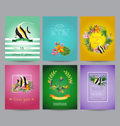 tropical fish and exotic flowers card set vector image