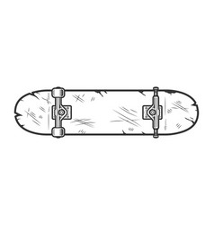 vintage skate board bottom view template vector image