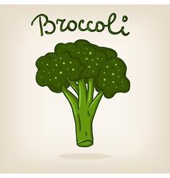 Cute of broccoli vector image vector image