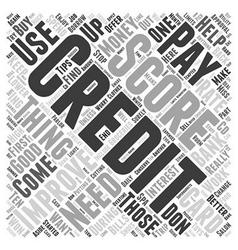 Improve Your Credit Score Word Cloud Concept vector image
