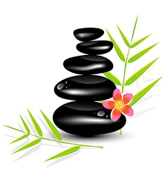 Hot stone massages and bamboo leaf vector