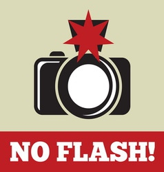 noflash2 resize vector image vector image