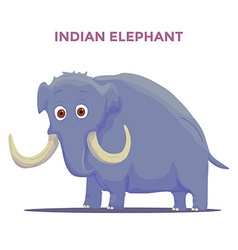Cartoon Indian Elephant isolated on white vector image