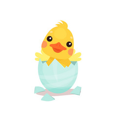 cute little yellow duck chick character hatching vector image