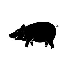 black pig on a white background vector image