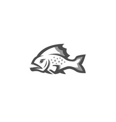 creative white piranha fish logo vector image