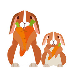 cute rabbit on white background vector image