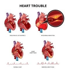 Heart disease infographics vector