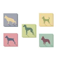 icon dogs vector image