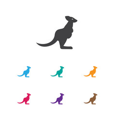 Of zoo symbol on kangaroo icon vector