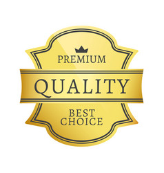 premium quality best choice vector image