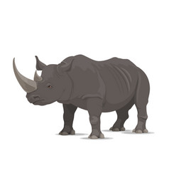 rhinoceros wild animal isolated icon vector image