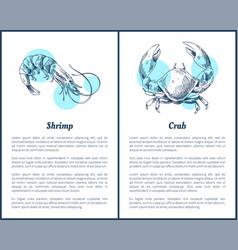 Shrimp and crab crustacean vector