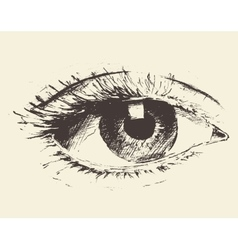Vintage an eye hand drawn sketch vector
