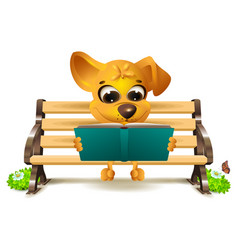Yellow dog sits on bench and reads book vector