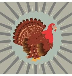 Cartoon Turkey Bird4 vector image vector image