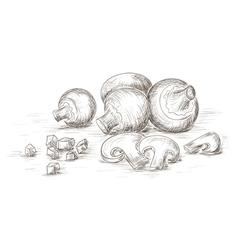 Hand drawn mushrooms vector image
