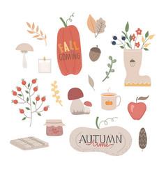 Autumn set fall phrases vector