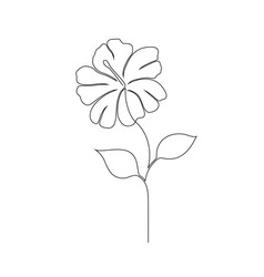 Hibiscus flower on white vector