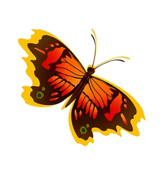 icon butterfly vector image