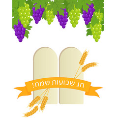 Jewish holiday of shavuot stone tablets and grape vector