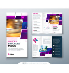purple tri fold brochure design with square shapes vector image