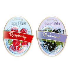 set labels with fruit and berries flavored vector image