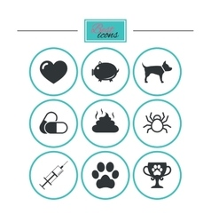 Veterinary pets icons Dog paw syringe signs vector