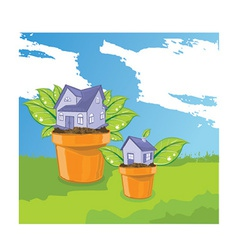 House plant vector image vector image