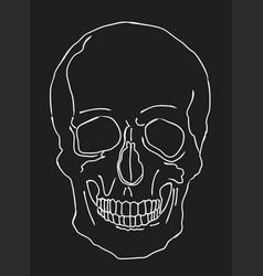 a skull vector image