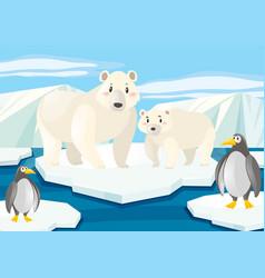 Polar bears and penguins on ice vector