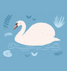 beautiful white swan swimming in water of pond or vector image
