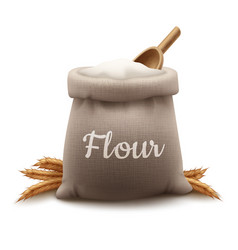 burlap bag flour vector image