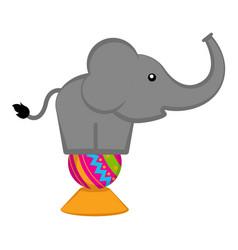 cute circus elephant vector image